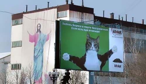 Gato en un cartel