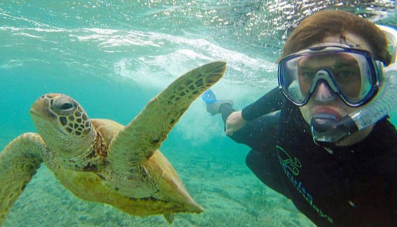 foto con una tortuga