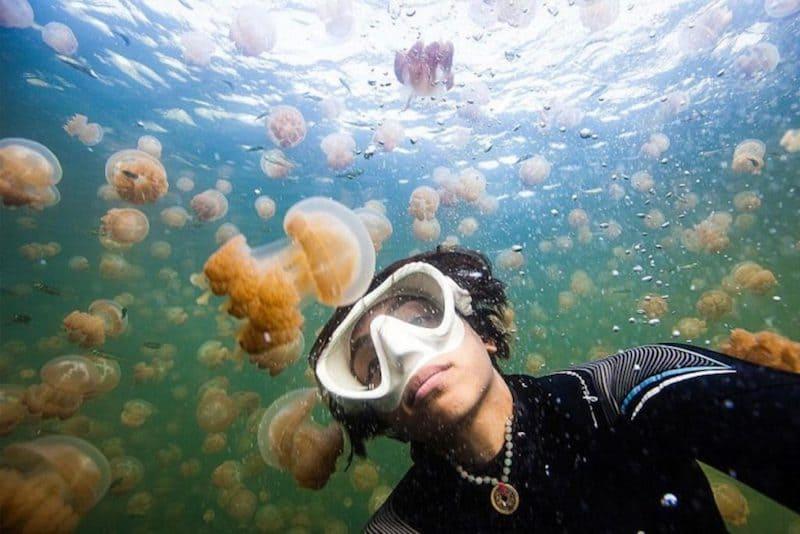 foto con medusas