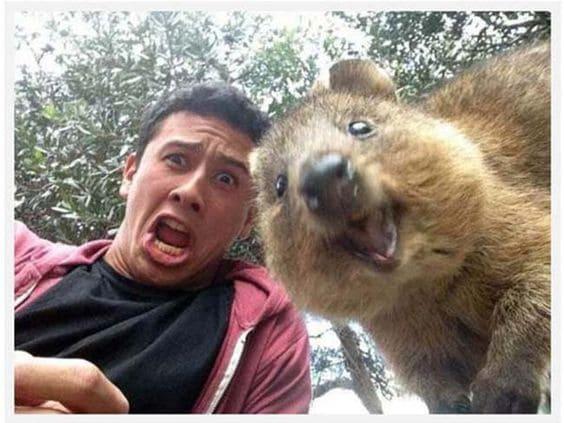Selfie con un castor